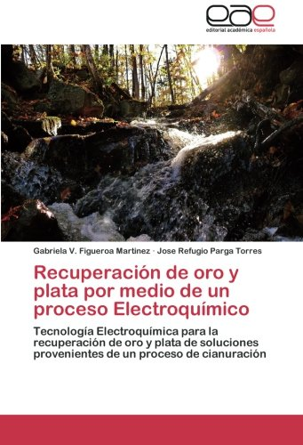 Recuperacin de oro y plata por medio de un proceso Electroqumico: Tecnologa Electroqumica para la recuperacin de oro y plata de soluciones ... un proceso de cianuracin (Spanish Edition)