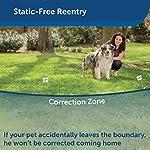 PetSafe-Stay-Play-Wireless-Fence