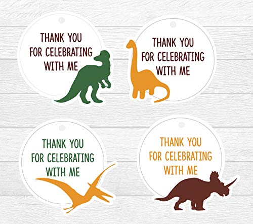 Dinosaur Thank You Tags12 Pcs, Little Dino Birthday Decoration Party Supplies, Baby Shower Themed, Trex -