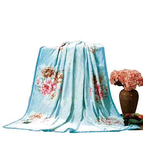 UFDIDD Warm Four Seasons Micro-Velvet Blanket for Sofas and beds, Anti-Wrinkle, Anti-Fading (200 230cm)
