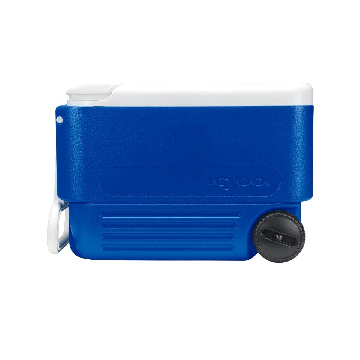 Igloo Nevera portátil Wheelie Cool 36 litros Ruedas, Camping ...