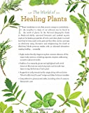 National Geographic Guide to Medicinal Herbs: The