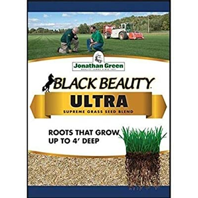 Jonathan Green Black Beauty Ultra Grass Seed, 7 Lb, 2800 Sq Ft Coverage : Garden & Outdoor