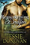Reawakening the Dragon (Stonefire Dragons) (Volume 5)