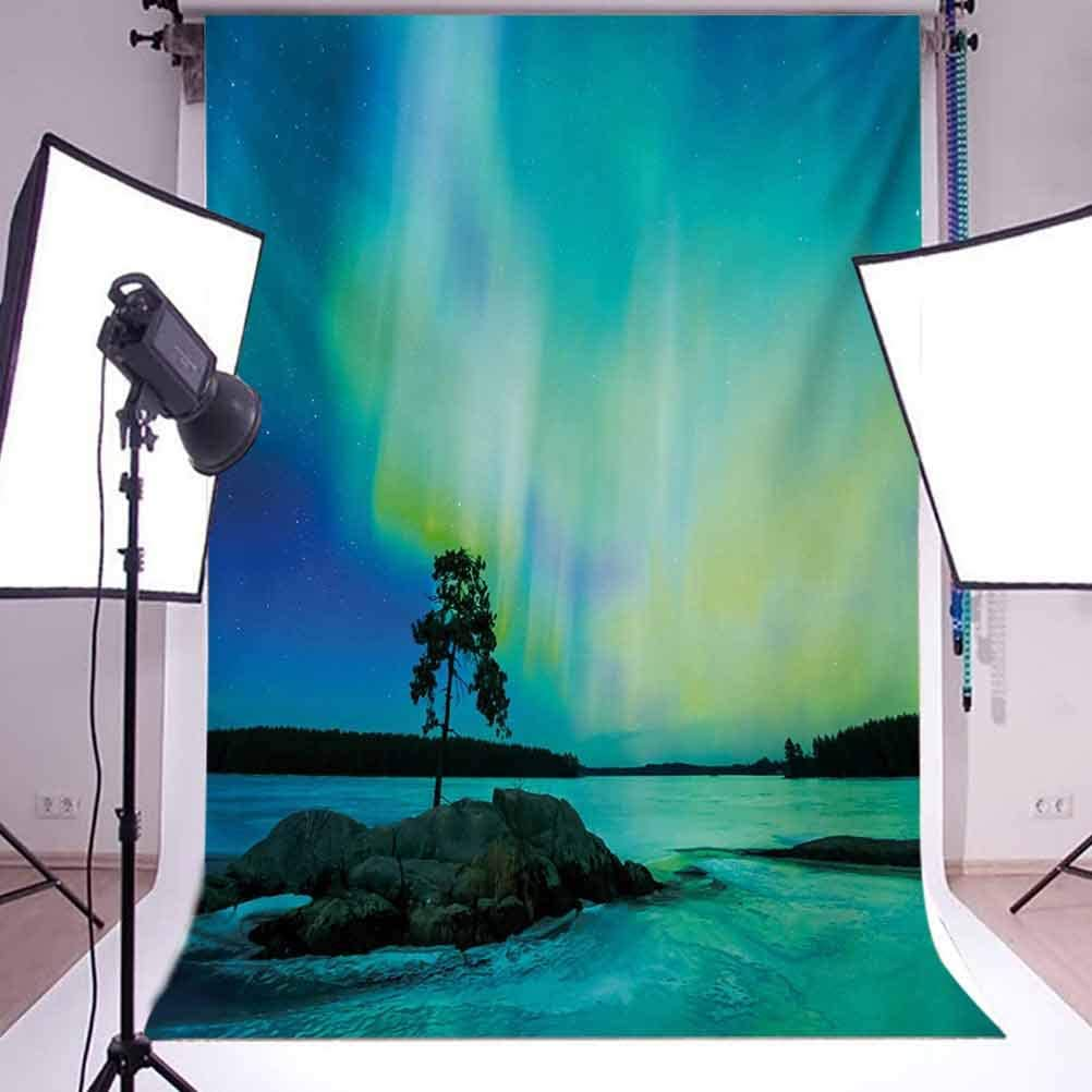 Aurora Borealis 6x8 FT Photography Backdrop Single Tree Over Rocky Stone by River Borealis Earth Beauty Image Background for Party Home Decor Outdoorsy Theme Vinyl Shoot Props Teal Blue Lime Green