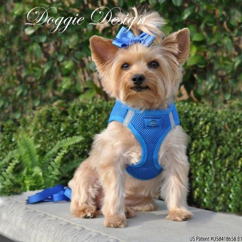 Choke Free Reflective Step in Ultra Harness - Blue - All Sizes - American River (Large) by Doggie Design ()