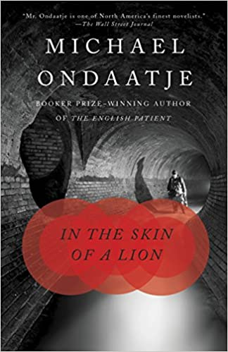 image for In the Skin of a Lion