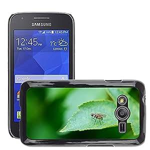 Etui Housse Coque de Protection Cover Rigide pour // M00116527 Animal Tie hoja hojas insectos // Samsung Galaxy Ace4 / Galaxy Ace 4 LTE / SM-G313F
