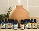 Healthful Naturals Premium Essential Oil Kit 600ml Diffuser