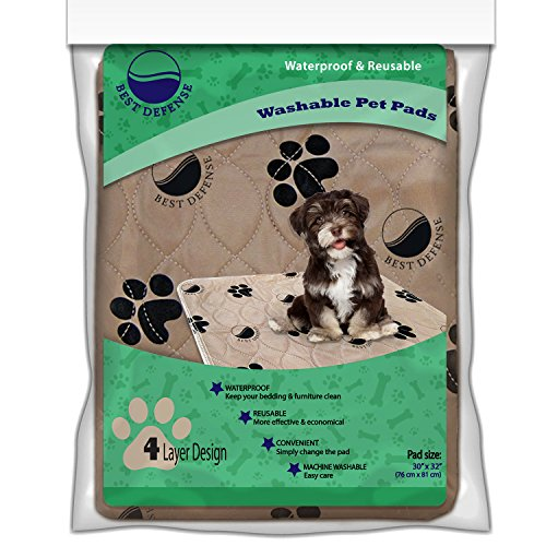 Washable Pee Pads for Dogs, 2- Pack Large Reusable Dog, Puppy Wee Wee, Whelping and Training Pad for Home, Apartment, Crate and - Shipping Tracking Economy