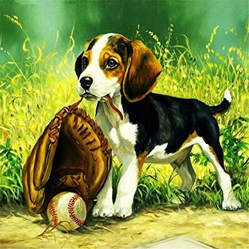 Paint by Numbers for Adults Frameless Canvas - DIY Full Set of Assorted Color Oil Painting Kit and Brush Accessories -Cute Baseball Dog,16X20 - Frameless Oil Painting Set
