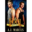 The Fool (Cards of Destiny Book 1)