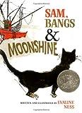 Sam, Bangs & Moonshine (Owlet Book)