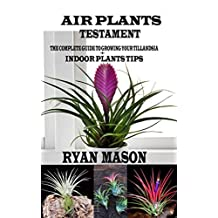Air Plants Testament : The Complete Guide To Growing Your Tillandsia + Indoor Plants Tips