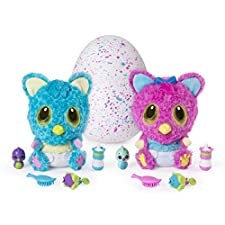 Hatchimals Egg Hatchibabies Cheetree Girl