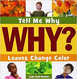 Book Leaves Change Color (Tell Me Why)