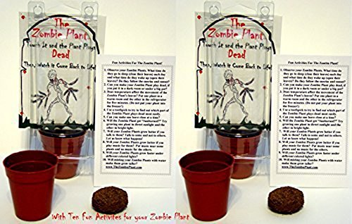 Unique Halloween Gift (2) ZOMBIE PLANT Party Favors - Touch it and it