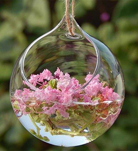 Transparent glass vase flowerpot plant hydroponics Glass Hanging Plant Terrarium/Votive Holder (10cm) (Flower Pot Votive Glass)