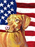 Cheap Caroline's Treasures LH9012CHF USA American Flag with Vizsla Flag Canvas, Large, Multicolor