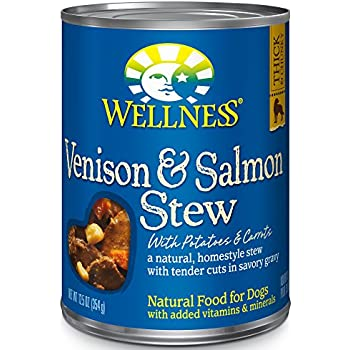 Wellness Thick Amp Chunky Natural Wet Canned Dog Food
