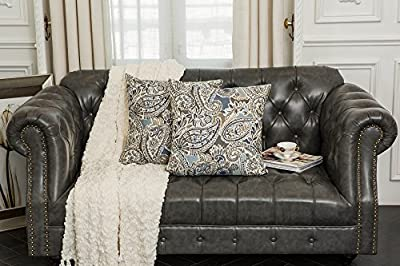 Mika Home Pack of 2 Decorative Accent Throw Pillow Cover Sham Cushion Case,Paisley Pattern,20x20 Inches