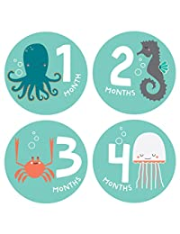 Lucy Darling Snorkeling Adventure Monthly Stickers BOBEBE Online Baby Store From New York to Miami and Los Angeles