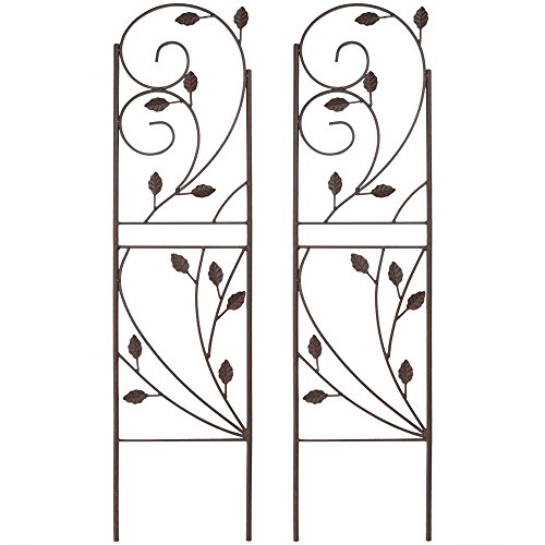 Sunnydaze 32 Inch Garden Trellis Rustic Plant Design, Metal Wire for Outdoor Climbing Flowers and Vines, Set of 2 by Sunnydaze Decor