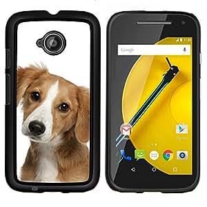 All Phone Most Case / Oferta Especial Duro Teléfono Inteligente PC Cáscara Funda Cubierta de proteccion Caso / Hard Case Motorola Moto E2 E2nd Gen // Pointer Puppy Terrier Dog Harrier