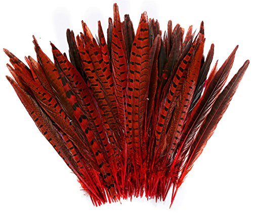 PANAX Chicken Feathers 25-30cm/10-12 Inch Length Red 20 Pieces, Ideal for Carnival, Halloween, Crafts, Handwerk, DIY, Clothing, Costumes