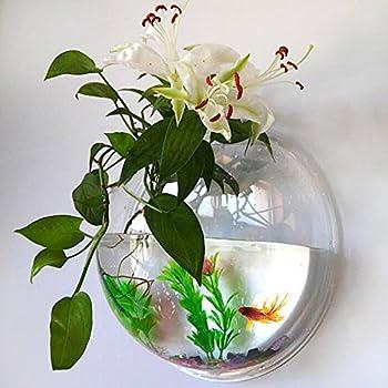 Amazon Fish Bubble Wall Mounted Acrylic Fish Bowl Wall
