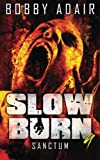 Slow Burn: Sanctum, Book 9 (Slow Burn Zombie Apocalypse Series) (Volume 9)