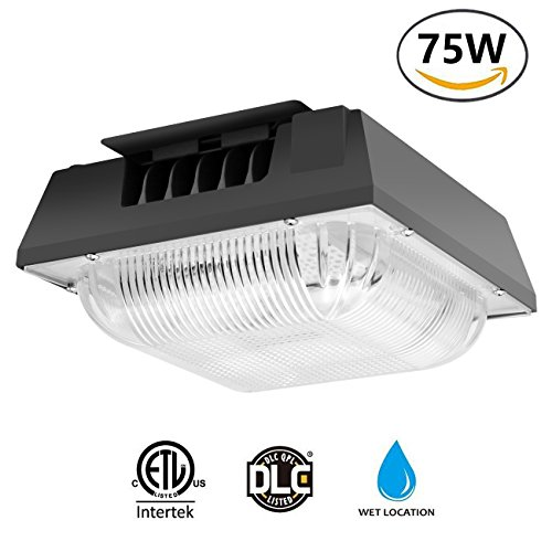 Cinoton 75W LED Canopy Light, (300-450W HPS/HID Replacement), 5000K (Crystal White Glow), 8300 Lumens, Waterproof and Outdoor Rated for Playground, Gym, Warehouse, Garage,Backyard