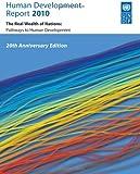 Human Development Report 2010 : 20th Anniversary Edition, Palgrave Macmillan Ltd Staff, 0230284450