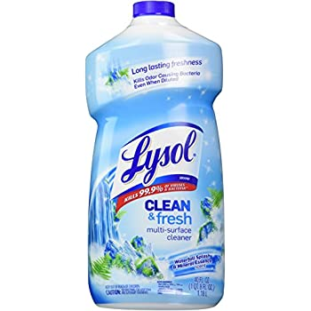 Amazon Com Lysol Power And Fresh All Purpose Cleaner