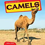 Camels, Willow Clark, 1448874890