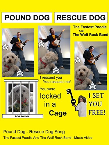 Pound Dog - Rescue Dog Song - The Fastest Poodle And The Wolf Rock Band - Music Video ()