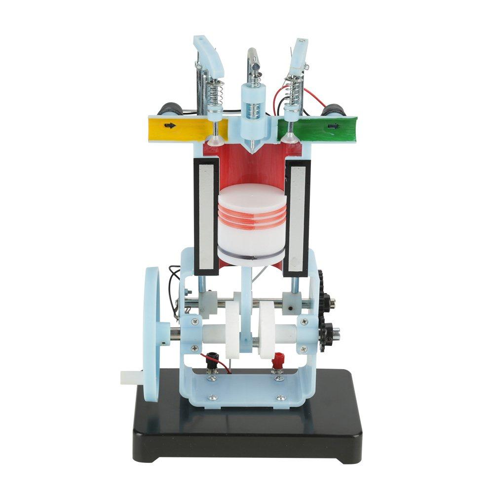 Akozon Modelo del Motor Diesel Combustión Interna de 4 Tiempos Instrumento de Enseñanza del Experimento de la Física
