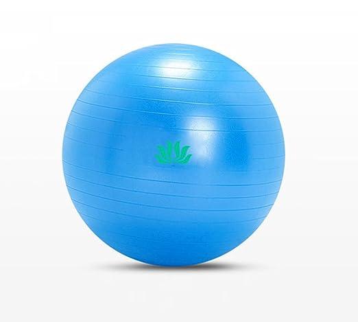 QCRLB Bola de Yoga, Pelota de Gimnasio Espesar a Prueba de ...