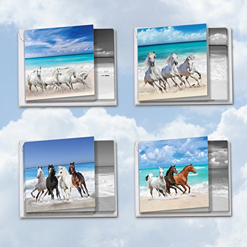 MQ5074OCB-B3x4 Gallops and Greetings: 12 Assorted 'Square-Top' Blank, All Occasions Note Cards Featuring Majestic Wild Horses Roaming Free; With Envelopes. by The Best Card Company
