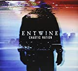 Chaotic Nation by Entwine
