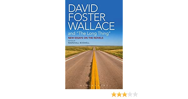 Amazon com david foster wallace and the long thing new essays on