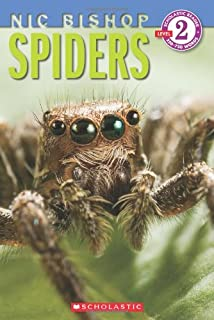 Sophies masterpiece a spiders tale eileen spinelli jane dyer spiders scholastic reader level 2 nic bishop 2 sciox Images