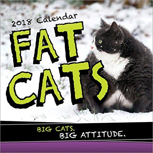 Funny Calendars Kamisco