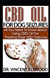 CBD Oil For Dog Seizures: All You Need To Know