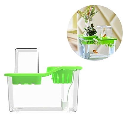Jannyshop Mini Acuario de Peces Vegetables Symbiotic Small Ecological Acrylic Fish Tank Crece Plantas con Bomba