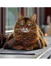 stylecats Fensterbankauflage Look