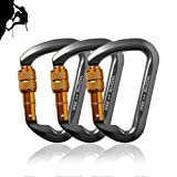 Likorlove 3 Packs 30KN Rock Climbing Carabiner, D-shaped Locking Screwgate Carabiner Hot-forged Magnalium Climber for Hiking/Travel/Mountaineer Karabiner-CE Eertified