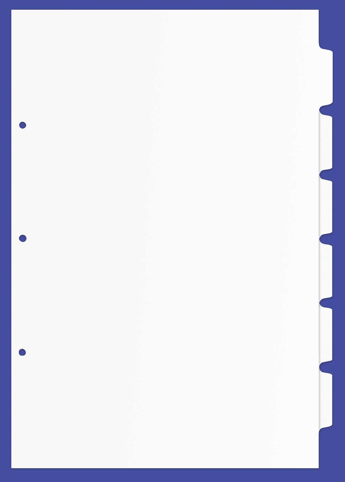 11x17 6 Tabbed Dividers, 17 x 11 Inches, Pack of 48, White (690804) by Ruby Paulina LLC