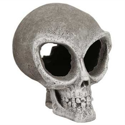 Blue Ribbon Exotic Environments Alien Skull, Small, 4-1/2-Inch by 5-1/2-Inch by 5-1/2-Inch