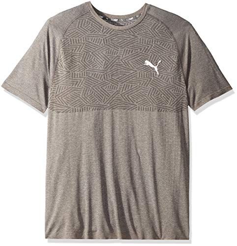 (PUMA Men's TEC Sports Evoknit TEE, Medium Gray Heather, L)